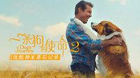 《一条狗的使命2》优酷独家幕后记录