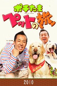 宠物当家之旅 2010