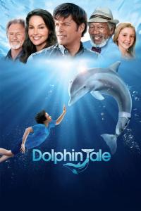 海豚的故事