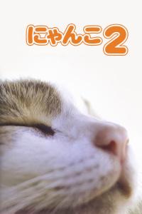猫咪物语2