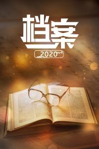 档案 2020