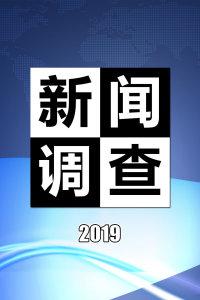 新闻调查 2019