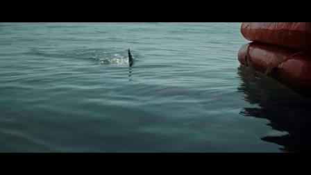 又有鲨鱼灾难片!《大浪白鲨》正式版预告片