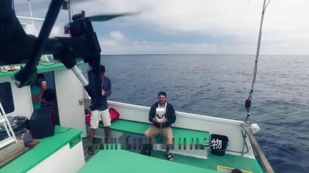 搜索传奇纪录片 《最孤独的鲸:寻找52》中字预告片
