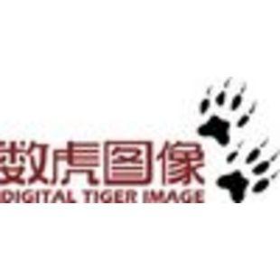 数虎图像Digital_Tiger