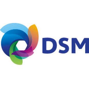 DSM-China