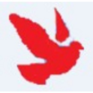 MSG魔术鸽