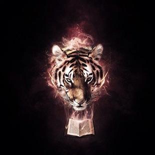 大老虎加倒霉熊
