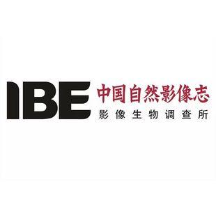 IBE影像