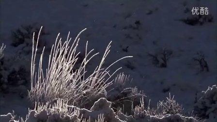 [老白] 冰封前尘