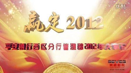 深圳企业汇报片-深圳平安银行2012记-深圳赛维影视