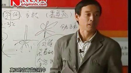 农博士在行动威远根力多专题之辣椒定植前后管理技术2011.5.3——燕国胜