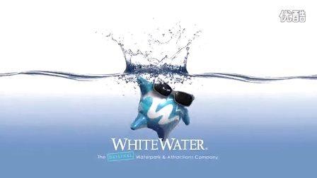 白水公司的发展历程及特色产品