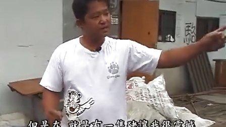 素食猪的由來 养猪户骆鸿贤的觉悟