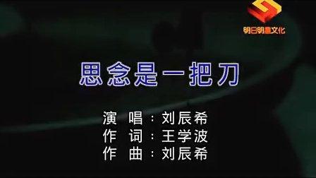 刘辰希:思念是一把刀