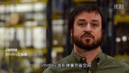 关于 Smalley 波形弹簧