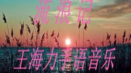 杨宗纬《流浪记》王海力手语音乐