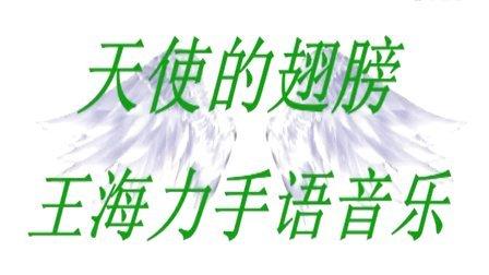 《天使的翅膀》王海力手语音乐