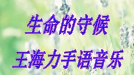 《生命的守候》王海力手语音乐