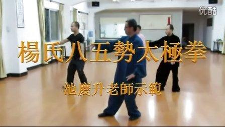 八五勢太極拳(池庆升老师东莞朋正太极养生馆演练)