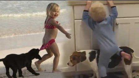 笑死不偿命:动物是宝宝朋友还是敌人