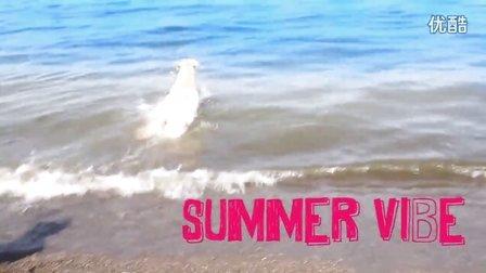Summer Vibe - Walk off the Earth (Original)