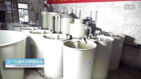 工厂化循环水养殖系统-广州中航企业宣传片