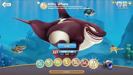 饥饿的鲨鱼世界 腥风血雨杀人鲸