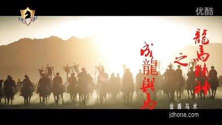 金盾马术:龙马精神之成龙与马