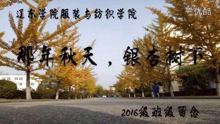 辽东学院服装与纺织学院2016级留念【那年秋天,银杏树下】