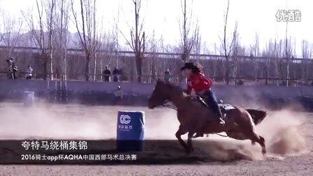 2016年中国最精彩的夸特马绕桶赛