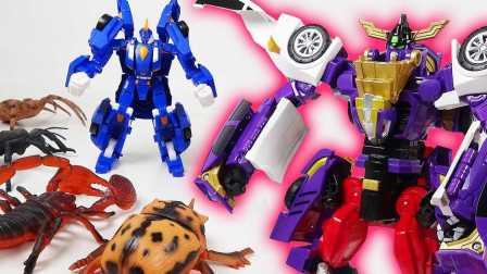 巨虫出现了 小儿科变形金刚 新魔幻车神 昆虫玩具 流行的玩具2017年 新玩具2017 玩具套
