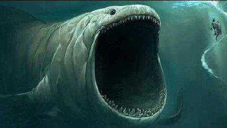 【逍遥小枫】我长大了连鲨鱼都敢一口吞!食草鱼的崛起!   海底大猎杀(Fish Sim)#18