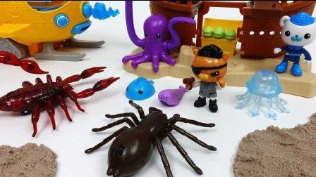 海底小纵队 游乐场 和悦悦的玩具 2017 海底小纵队 糖果公园 虫害 蝎子蜘蛛和 玩具 海底总动员