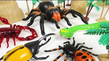 集合蠕动的玩具 蝎子蜘蛛甲虫蛇 超级玩具 我的世界玩具 流行的玩具 有趣的玩具令人毛骨悚然