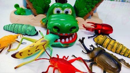 鳄鱼吃昆虫 小企鹅啵乐乐动画片 该巨型蠕虫 海盗基地 昆虫 鳄鱼头玩具 蚂蚱,蠕虫,蝗虫,臭虫等