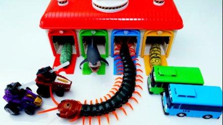 恐龙机器人 玩具秀 小巴士卡通高清和昆虫  蠕虫,鲨鱼,蜈蚣和恐龙 巴士玩具