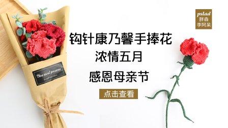 【胖森李阿呆】母亲节礼物,钩针康乃馨