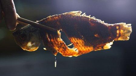 揭秘美食豆豉鲫鱼的做法