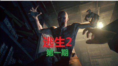 小夭尖叫解说【逃生2】(完结)