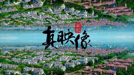 真映像电影「钱斌伟+万羽」户外婚礼快剪-杭州花家山庄
