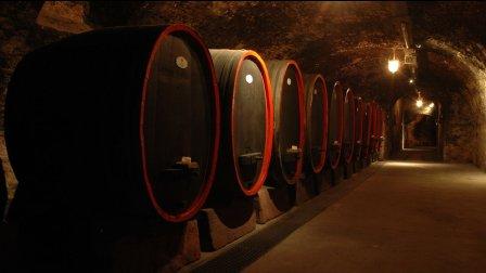 德国葡萄酒系列 - 最传奇的雷司令种植园
