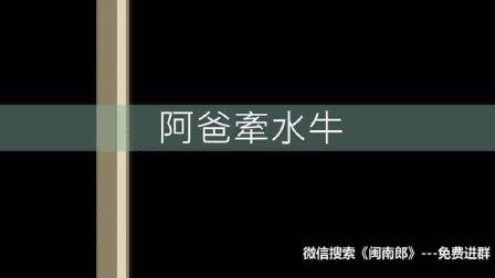 闽南语搞笑歌曲《阿爸牵水牛》