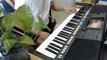 电子琴演奏《母亲》
