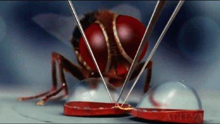 """一个""""微雕专家""""为苍蝇设计终极装备, 苍蝇的身份让人有点意外!"""