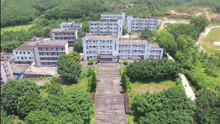 鹤山鹤城中学