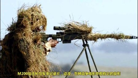 世界上最恐怖的狙击手, 个个都是百步穿杨的好手