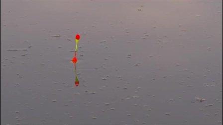 浮漂被鱼拖着跑, 深呼吸, 大雨来了!
