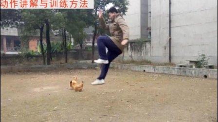 腾空飞脚的基本训练