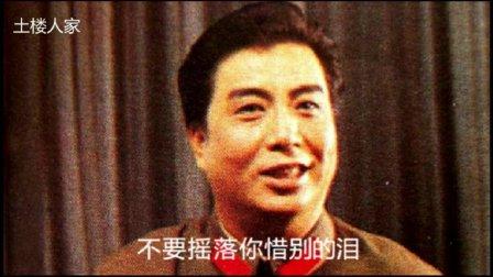 李双江 - 再见了, 大别山